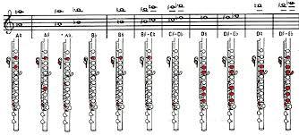 Piccolo Flute Finger Chart Pin On Flute