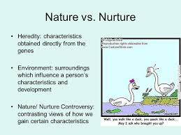 an essay about nature vs nurture college paper academic writing  an essay about nature vs nurture