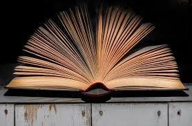 Image result for grāmatas