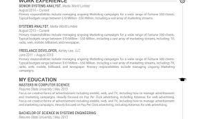 Digital Media Specialist Sample Resume Registered Nurse Resume