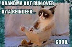 Grumpy Cat on Pinterest | Grumpy Cat Meme, Grumpy Cat Quotes and Meme via Relatably.com