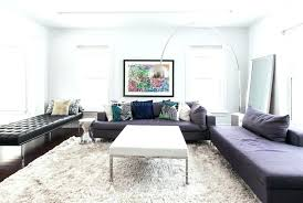 houzz rugs living room family awesome fluffy for area furniture s nyc