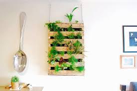 Hanging Kitchen Herb Garden The Brew Diy Pallet Living Wall