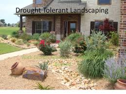 Small Picture Drought Friendly Landscaping California Drought Resistant
