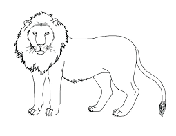 mountain lion coloring pages mountain lion coloring page mountain lion coloring page lion color page mountain
