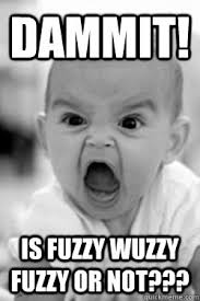 Dammit! Is Fuzzy Wuzzy fuzzy or not??? - Annoyed Baby - quickmeme via Relatably.com