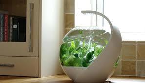 office fish tanks. Office Fish Tank All Images Cool Tanks Mentformcom