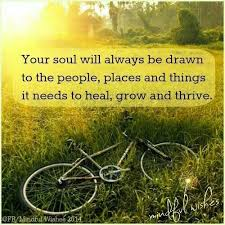 Image result for feed the soul quotes