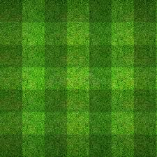 green grass soccer field. Download Green Grass Pattern Texture For Soccer Field Background. Stock Photo - Image Of Lawn
