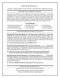 Business Development Executive Resume Sample Free Samples