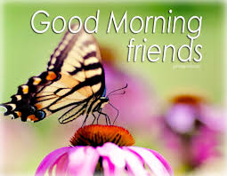 Good Morning Animated Images With Quotes Best Of Good Morning Free Images Animated Pics And Quotes