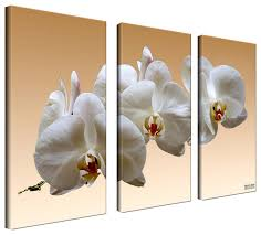ready2hangart bruce bain white orchid canvas wall art 3 piece set  on set of three framed wall art with ready2hangart bruce bain white orchid canvas wall art 3 piece set