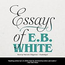 listen to great american essays audiobook com essays of e b white cover art