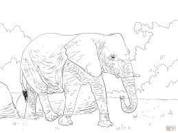 Small Picture Coloring Page Of African Elephant anfukco