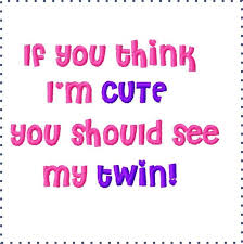 I Love My Twin Sister Quotes Best 48 I Love My Twin Sister Quotes Photos QuotesBae