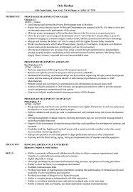 Category Development Manager Sample Resume Process Development Resume Samples Velvet Jobs 18