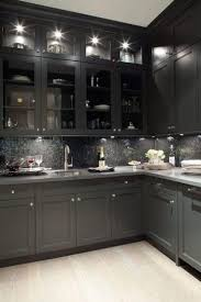 charcoal grey kitchen cabinets. Contemporary Kitchen Kitchen Dcor The Best Among The Rest Grey Cabinets Gray Cabinets And  Kitchens On Charcoal Cabinets I