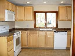 Remodeling Kitchens On A Budget Captivating Kitchen Remodeling On A Budget With New Cabinet Door