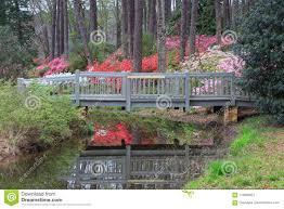 callaway gardens azalea overlook pine mountain georgia