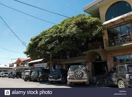 The Tree House Restaurant And Bar Santa Elena Monteverde Costa Treehouse Monteverde Costa Rica
