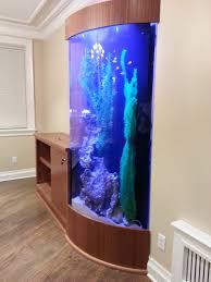 Custom acrylic aquarium
