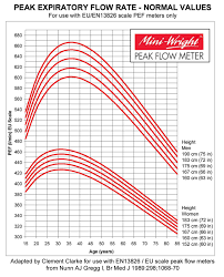 Peak Flow Calculator Adults