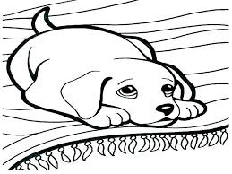 Free Dog And Cat Colouring Pages Coloring Pages Of Cats Colouring