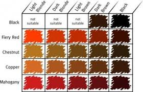 Different Shades Of Red Chart Different Shades Of Red Hair Medium Hair Styles Ideas