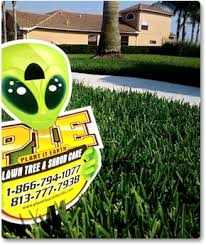 lawn maintenance orlando. Contemporary Orlando Lawn Care Weed U0026 Pest Control And Tree Shrub Care In Tampa Orlando  Throughout Central Florida For Maintenance R