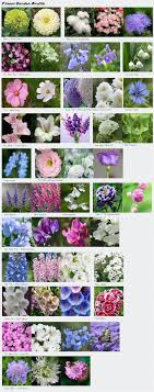 Small Picture Fine Cut Flower Garden To Inspiration