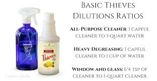 basic thieves household cleaner recipe dilutions