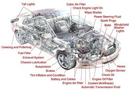 1998 Toyota Camry Engine Parts Diagram Body Name Chart Human ...