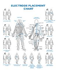 Electrode Placement Chart