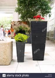 Big Flower Vase Design Flower Arrangement Big Vase Decoration Abstract Concept Idea