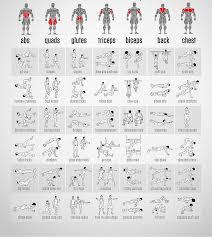 71 Methodical Bodyweight Exercises Chart Pdf
