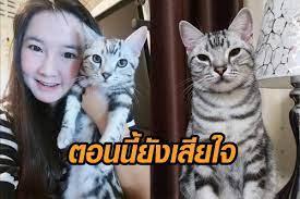 เจ้าของ 'เจ้าสัว' เปิดใจหลังรู้ผลชันสูตร เผยยังร้องไห้อยู่ สงสารแมวมาก