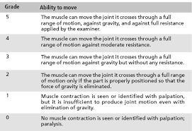Mmt Grades Muscle Power Grading Bone And Spine