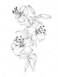 скачайте стоковое векторное изображение группа лилий цветочный фон