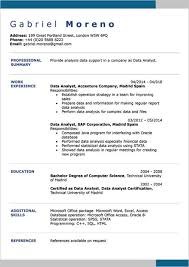 resume example for free english cv examples doc word cv examples resume