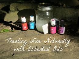Treating Lice Naturally with Essential Oils