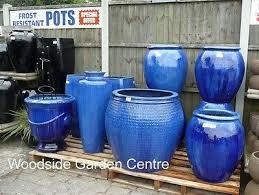 extra large blue glazed pot tree