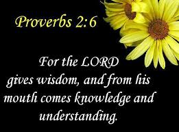 Image result for proverbs 2