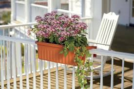 apartment gardening. Modren Gardening Dress Up Your Balcony With An Adjustable Railing Planter Box These  Innovative Boxes Make It Easy To Add A Beautiful Garden Apartmentu0027s Balcony And Apartment Gardening N