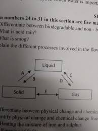 Explain The Different Processes Involved In The Flow Chart