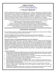 Best It Manager Resume Sample For Midlevel Project Monster Com ...
