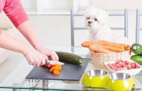What is the best commercial low fat dog food for pancreatitis? Tips For Making Home Cooked Dog Food Lovetoknow