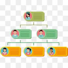 Organization Chart Psd Organizational Chart Template Photoshop Www