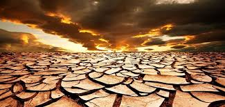 essay on global warming causes effects and solution desertification