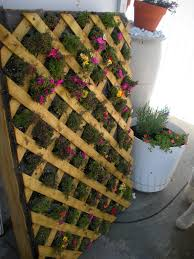 this is another vertical garden design that is constructed from a pallet it does a great job at adding a splash of color and natural design to your yard