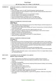 Product Analyst Resume Sample Unusual Product Analyst Resume Senior Product Analyst Resume 17